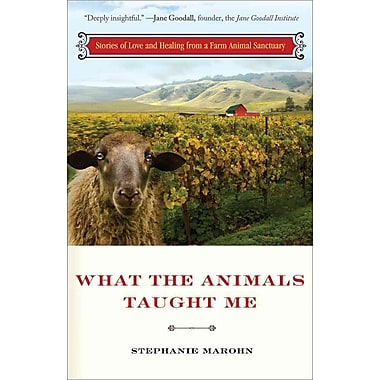 What the Animals Taught Me Stephanie Marohn Paperback