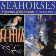 Seahorses: Mysteries of the Ocean Catherine Wallis Hardcover