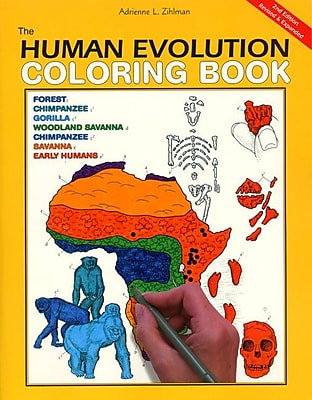 The Human Evolution Coloring Book Adrienne L. Zihlman Paperback