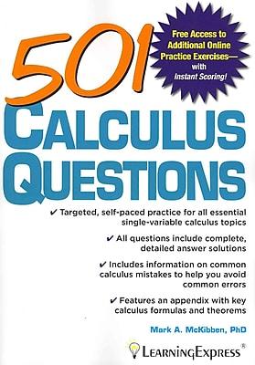 501 Calculus Questions Mark McKibben Paperback