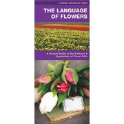 The Language of Flowers James Kavanagh Paperbac