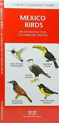 Mexico Birds James Kavanagh Paperback