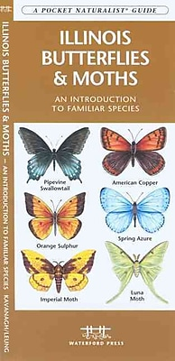 Illinois Butterflies & Moths James Kavanagh Paperback