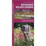 Roadside Wildflowers James Kavanagh Paperback