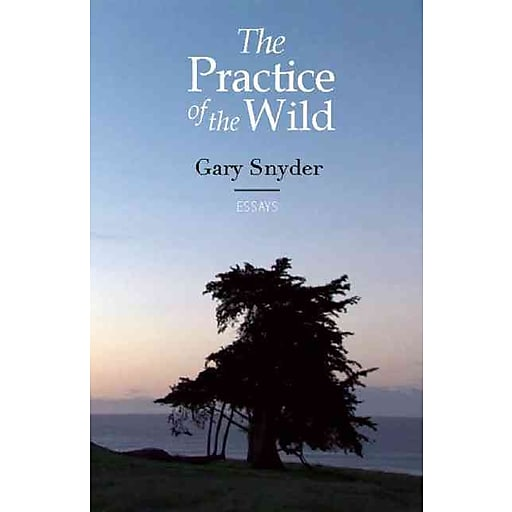 gary snyder essay four changes Click to read more about back on the fire: essays by gary snyder librarything is a cataloging and social networking site for booklovers.