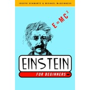 Einstein for Beginners Joseph Schwartz, Michael McGuinness Paperback