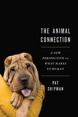 The Animal Connection Pat Shipman Hardcover