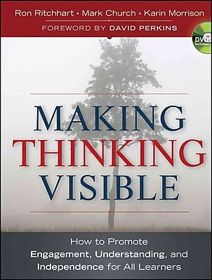 Making Thinking Visible Ron Ritchhart, Mark Church, Karin Morrison Paperback
