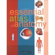 Essential Atlas of Anatomy Parramon Studios Paperback