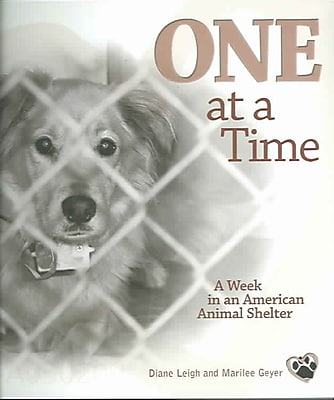 One at a Time: A Week in