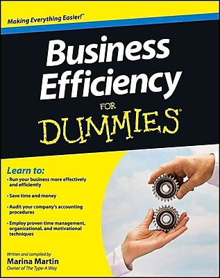 Business Efficiency For Dummies (Business and Personal Finance )