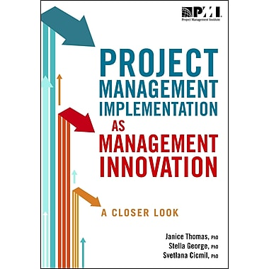 Project Management Implementation As Management Innovation: A Closer Look
