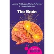 The Brain: A Beginner's Guide (Beginner's Guides)