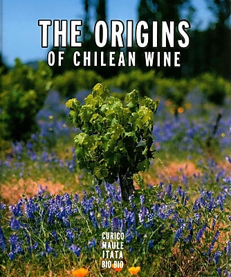 Origins of Chilean Wine
