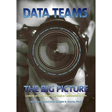 Data Teams: The Big Picture: Looking at Data Teams through a Collaborative Lens