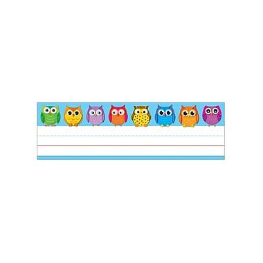 Carson Dellosa Colorful Owls Nameplates