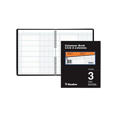 Blueline® 767 Series Single Format Columnar Pad, A767-03T, 3 Columns, 10