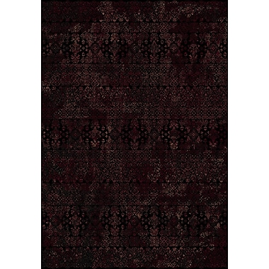 Dynamic Rugs Ancient Garden Persian Black Area Rug; Rectangle 2' x 3'11''