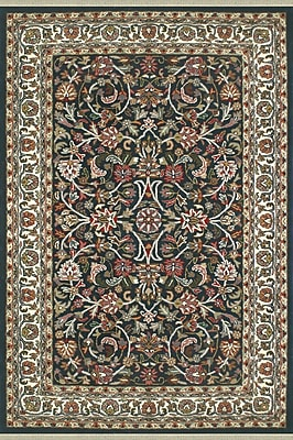 American Home Rug Co. American Home Classic Kashan Navy/Ivory Area Rug; 5'6'' x 8'6''