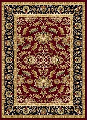 Dynamic Rugs Yazd Black/Red Area Rug; 2' x 3'6''