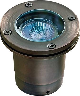Dabmar Lighting 1-Light Well Light; Weathered Brass