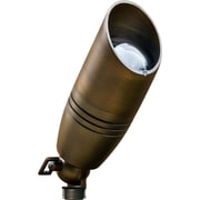 Dabmar Lighting 1-Light Spot Light; Weathered Brass