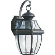 Forte Lighting 1-Light Outdoor Wall Lantern; Royal Bronze
