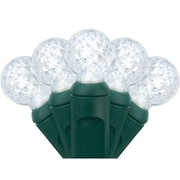 Wintergreen Lighting 70 Light String LED Lights; Cool White
