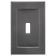 RQ Home Single Toggle Magnetic Wall Plate; Wrought Iron