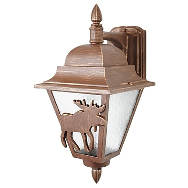 Melissa Americana 1-Light Outdoor Wall Lantern; White