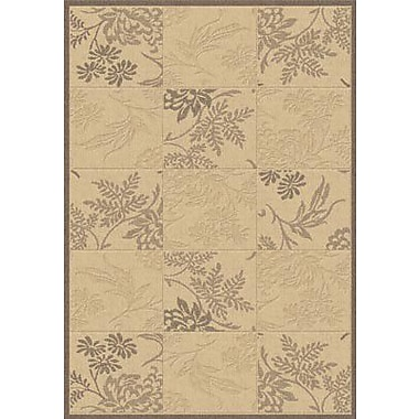 Dynamic Rugs Piazza Brentwood Natural/Brown Indoor/Outdoor Area Rug; 3'11'' x 5'7''