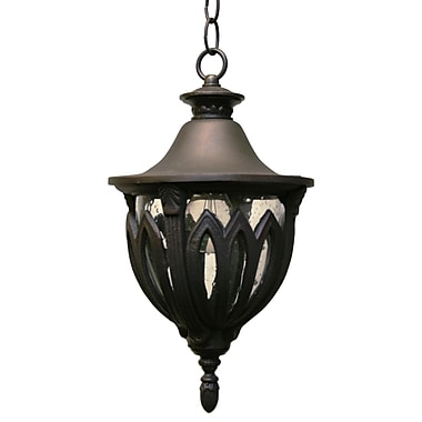 Melissa Tuscany 1-Light Outdoor Hanging Lantern; Aged Silver