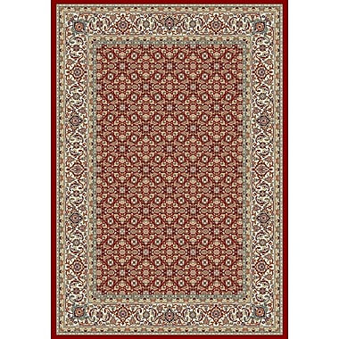 Dynamic Rugs Ancient Garden Red/Ivory Area Rug; Rectangle 3'11'' x 5'7''