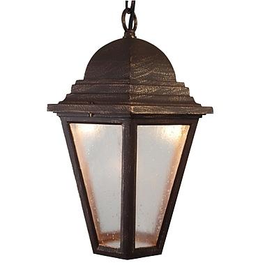 Melissa Kiss Series 1-Light Outdoor Hanging Lantern; Aged Silver