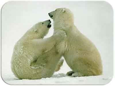 McGowan Tuftop Polar Attraction Cutting Board