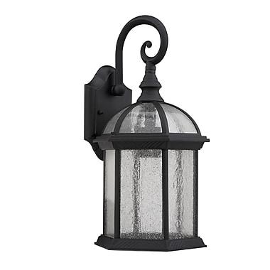 Chloe Lighting Havana Divine 1-Light Outdoor Wall Lantern; Black