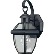 Forte Lighting 1-Light Outdoor Wall Lantern; Black