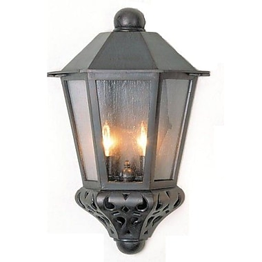 Melissa Tuscany 2-Light Outdoor Flush Mount; White