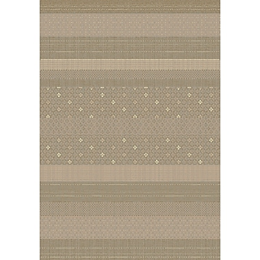 Dynamic Rugs Imperial Taupe Area Rug; Rectangle 5'3'' x 7'7''