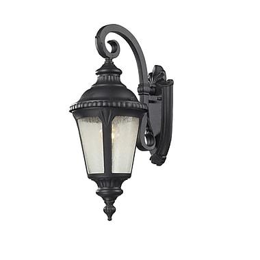 Z-Lite Medow 1-Light Outdoor Wall Lantern
