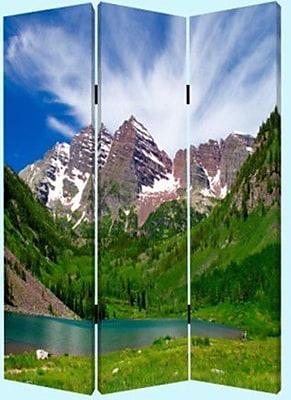 Screen Gems 72'' x 48'' Mountain Peaks 3 Panel Room Divider