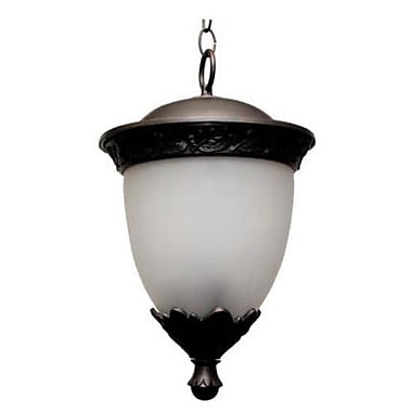 Melissa Tuscany 1-Light Outdoor Pendant; Aged Silver