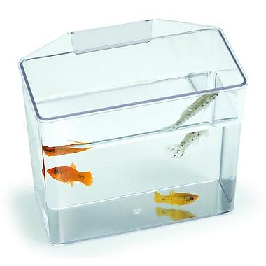 Lees Aquarium & Pet Aquarium Specimen Container Tank; 5.13'' H x 2.5'' W x 4.5'' D