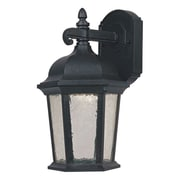 Designers Fountain Abbington 1-Light Outdoor Wall Lantern; 9'' W