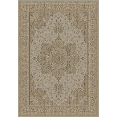 Dynamic Rugs Imperial Faded Taupe Area Rug; 3'10'' x 5'7''