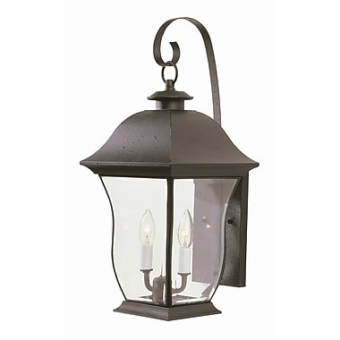 TransGlobe Lighting Outdoor Wall Lantern; 21.5'' H x 9.25'' W / Brushed Nickel