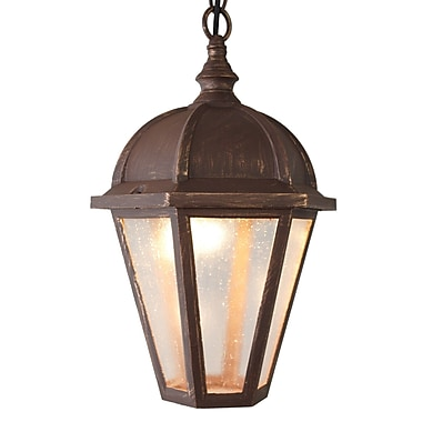 Melissa Kiss Series 1 Light Outdoor Hanging Lantern Patina Bronze Staples