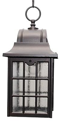 Melissa 600 Series 1-Light Outdoor Hanging Lantern; Architectural Bronze