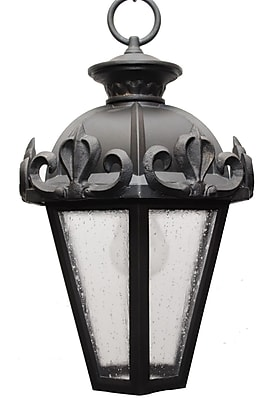 Melissa Parisian Elegance 1-Light Outdoor Hanging Lantern; Black