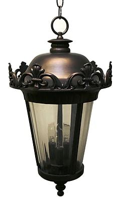 Melissa Parisian Elegance 3-Light Outdoor Hanging Lantern; Black